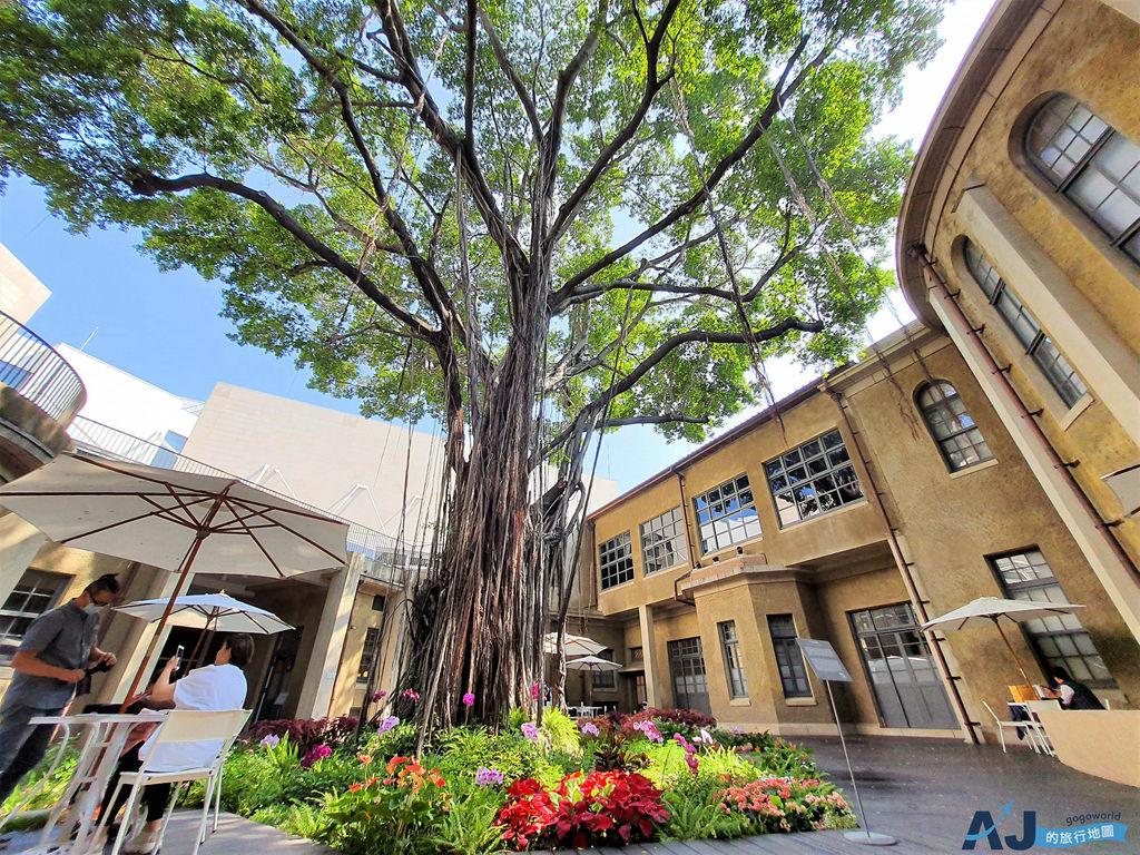 台南美術館一館 比南美館二館更厲害的地方 來中庭花園喝杯咖啡 溫故知新咖啡館 開放時間分享