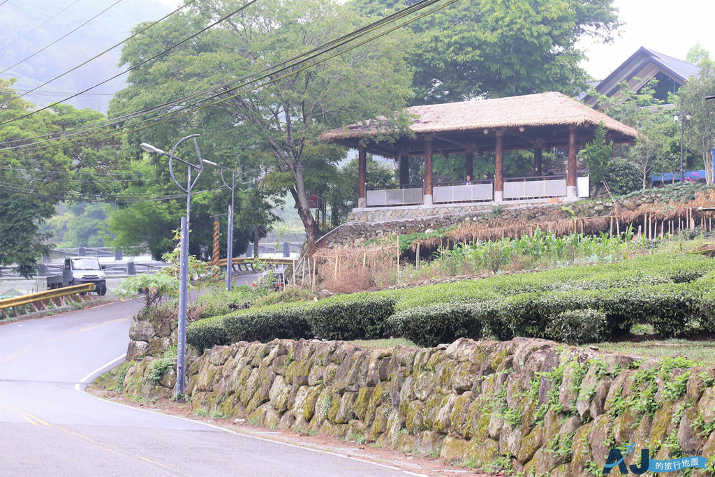 鄒築園:阿里山最厲害的精品咖啡在這裡 咖啡王子與他的藝妓咖啡豆 順遊金皮雕與迷糊步道