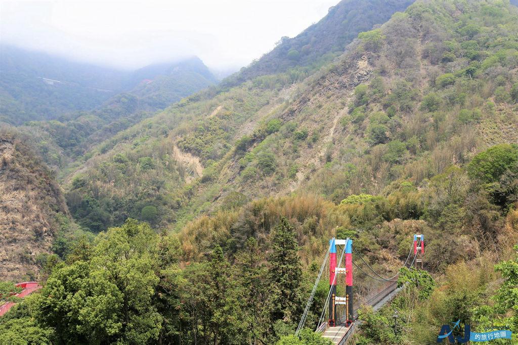 阿里山景點:走廊咖啡 來鄒族特富野部落喝一杯好咖啡 順遊特富野步道、樟樹巨木群
